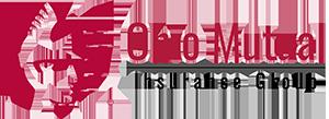 ohio mutual insurance group